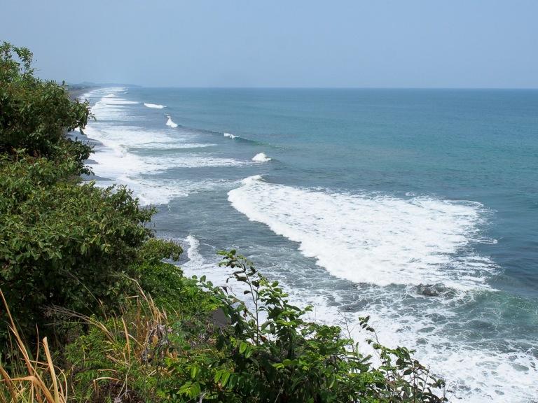Costa Rica- Jungle Monkeys and Sandflies