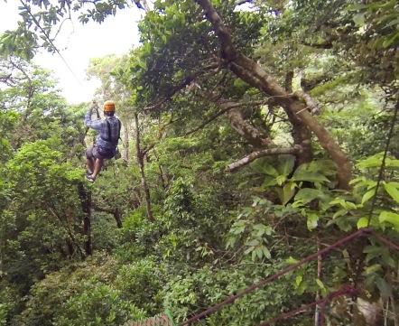 Back into the jungle