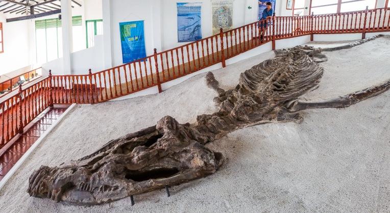 7m Kronosaurus! Dinosaurs aaaaah!!!