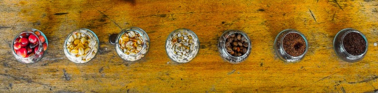 "From left to right: 1. Fresh coffee beans 2. Deshelled and dried beans 3. The remaining husks after dehusking 4. The beans are roasted to the desired color 5. Ground fresh beans for coffee 6. Colombian ""tinto"" or coffee from rejected beans. Not quite as much flavor, but still pretty good."